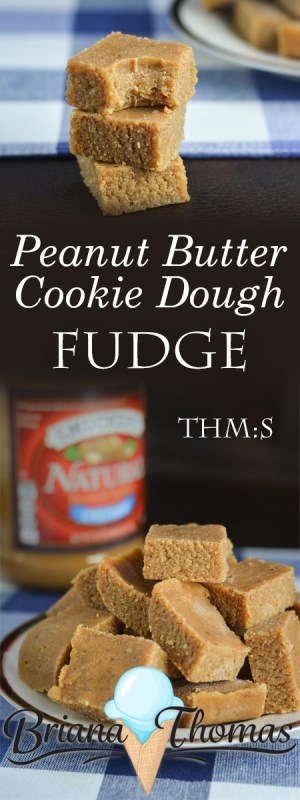 This Peanut Butter Cookie Dough Fudge is super easy to make! THM:S, low carb, sugar free, and gluten/egg free with a dairy-free option