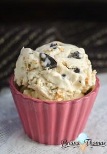 Brianafinger Ice Cream