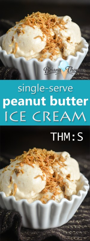 This single-serve peanut butter ice cream doesn't require an ice cream maker and comes together in a snap! THM:S, low carb, sugar free, gluten/egg free