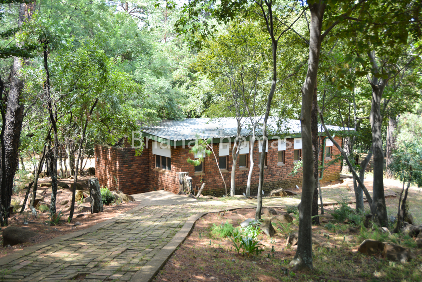 Here's a photographic snippet of the first part my South Africa trip! This installment features our first weekend spent at the Samekoms conference center.