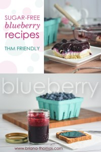 All the Blueberry Recipes! {Recipe Roundup}