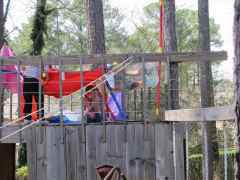 Fort on the Treehouse