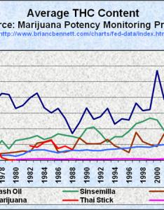 Average thc content in seized cannabis samples also truth the anti drugwar rh briancbennett
