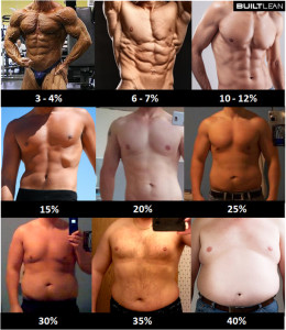 fitness progress body fat percentage men