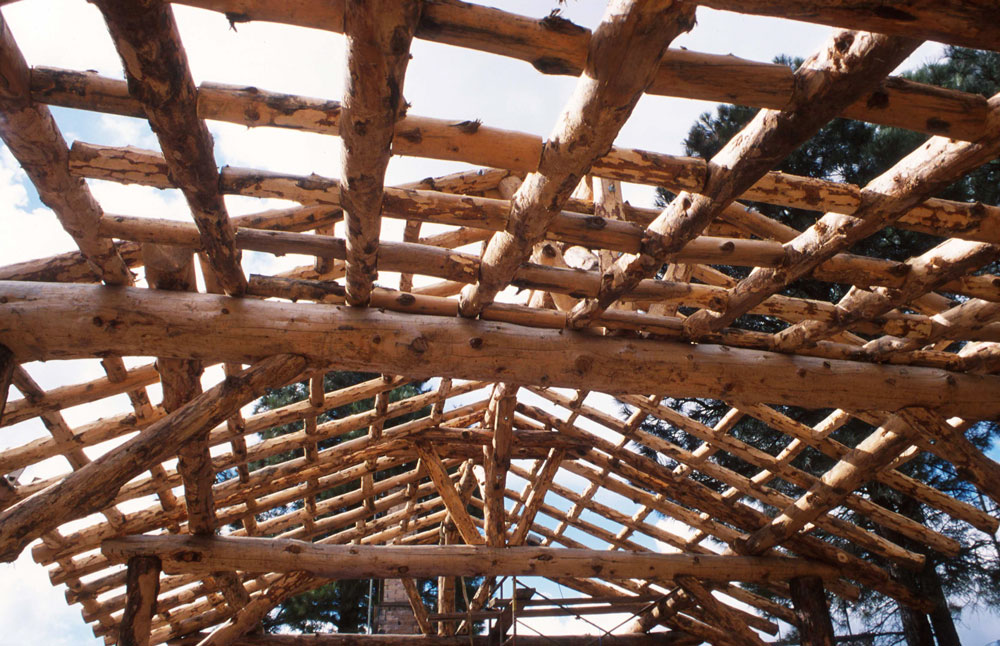 building the timber frame shed
