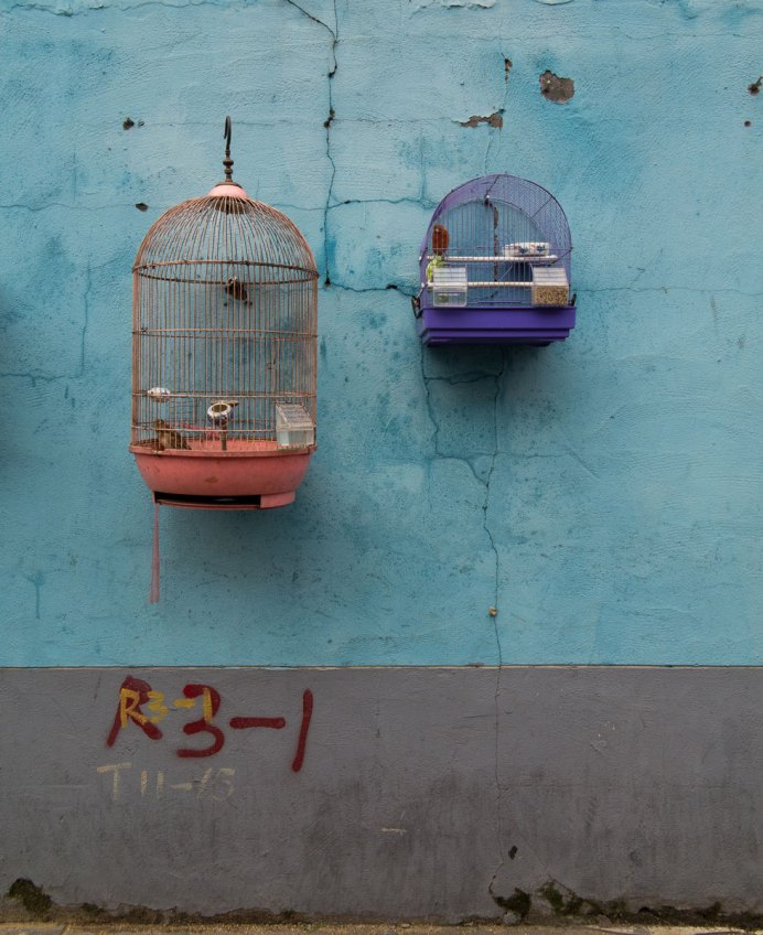 Two Birds in Two Cages, Shanghai, China (IMG_3452)