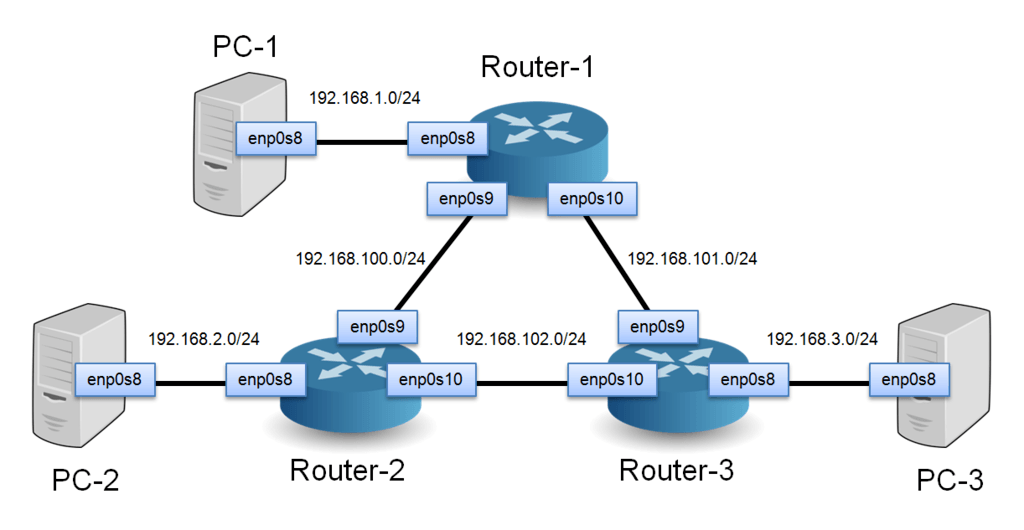 physical topology diagram human bone structure how to build a network of linux routers using quagga | open-source routing and simulation