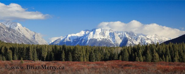 Spectacular Moose Meadows in Late Winter.