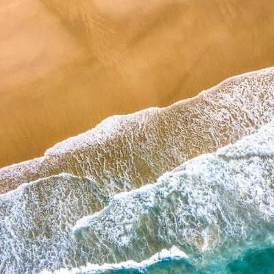 The Shore - Aerial Artwork