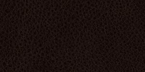 Leather #9J1728