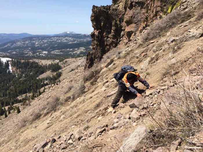 Example of Crawl Technique