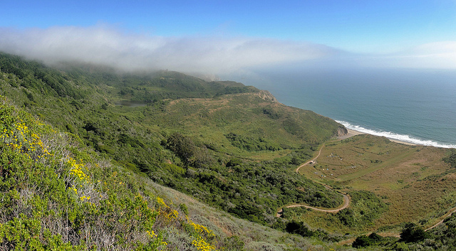 Wildcat Beach from Point Reyes Coast Trail
