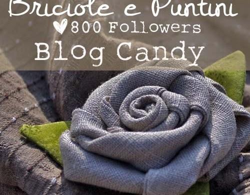 blog_candy_800_followers