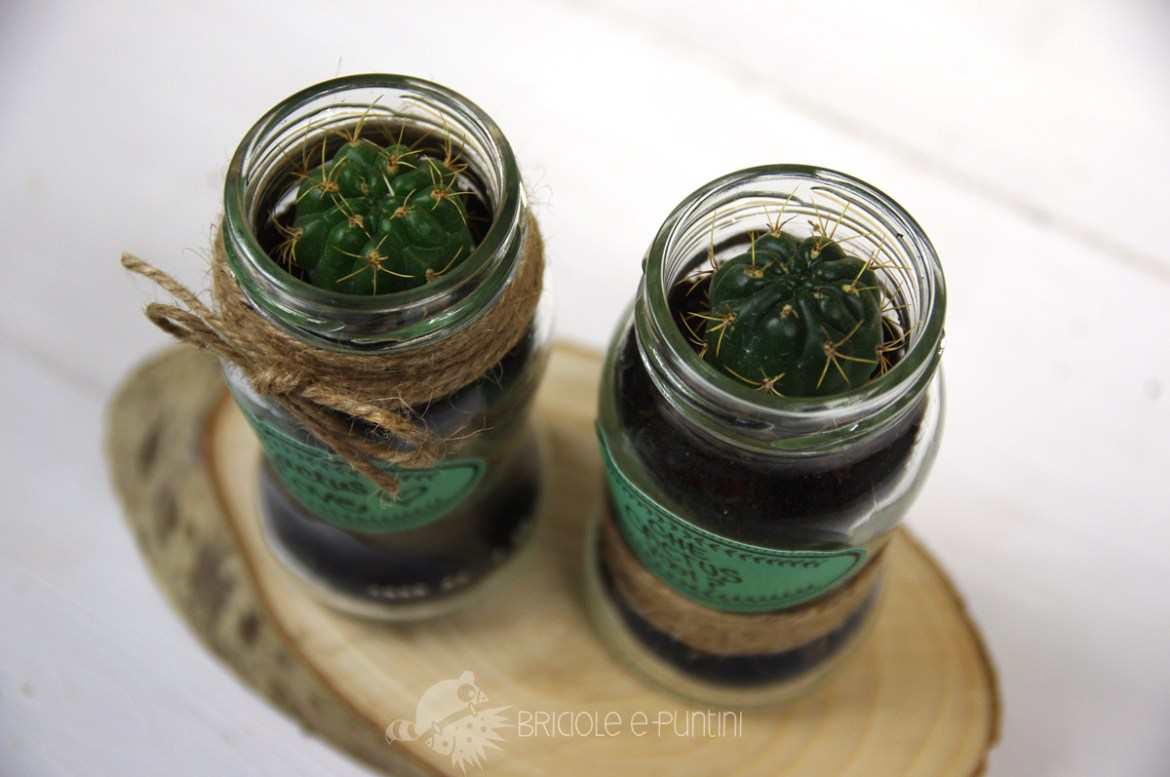 DIY mini terrarium in a jar - wondervasetto