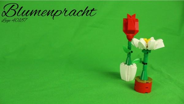 Lego 40187 - Blumenpracht