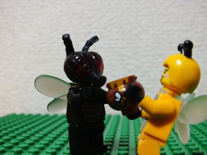 Bea Bee and the Fly - 6