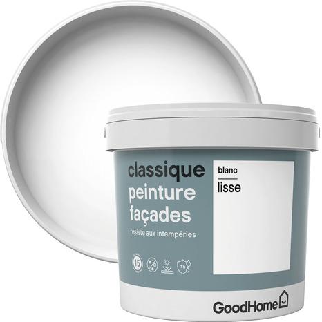 Peinture Facade Blanc Brillant Pur 5l Brico Depot
