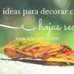decorar-con-las-hojas-secas