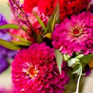 Free Fall Season Wallpaper Flowers In Season April Bridalguide