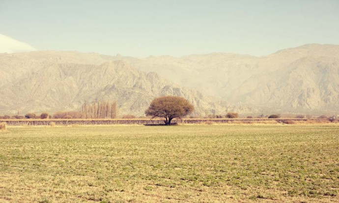 Mountains around Cafayate