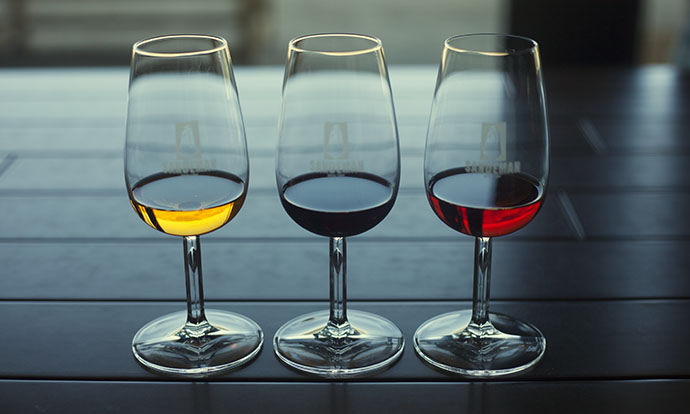 Port wine tasting, douro valley