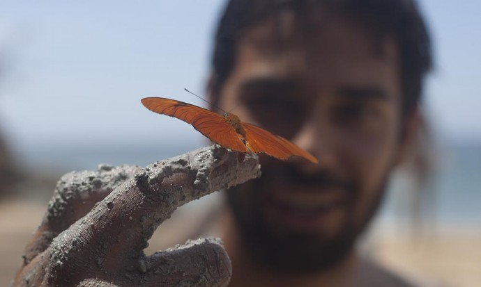Butterfly in the mud San pancho