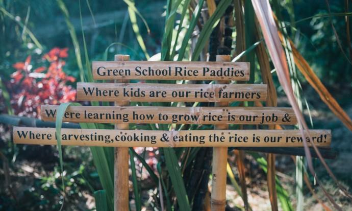 Green school sign