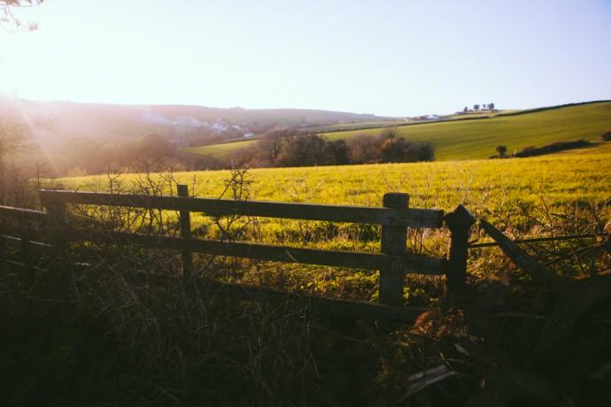 Salcombe farmers field