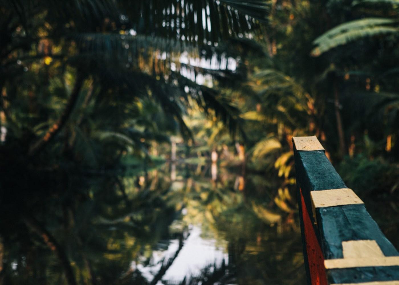Kerala backwaters boat trip