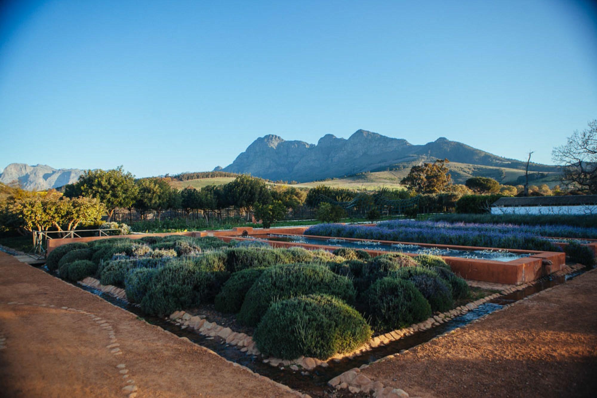 Honeymoon hotel in Cape Winelands