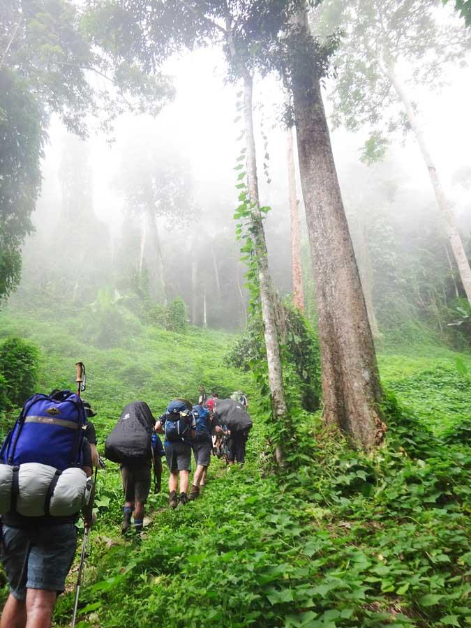 Kokada trek experience