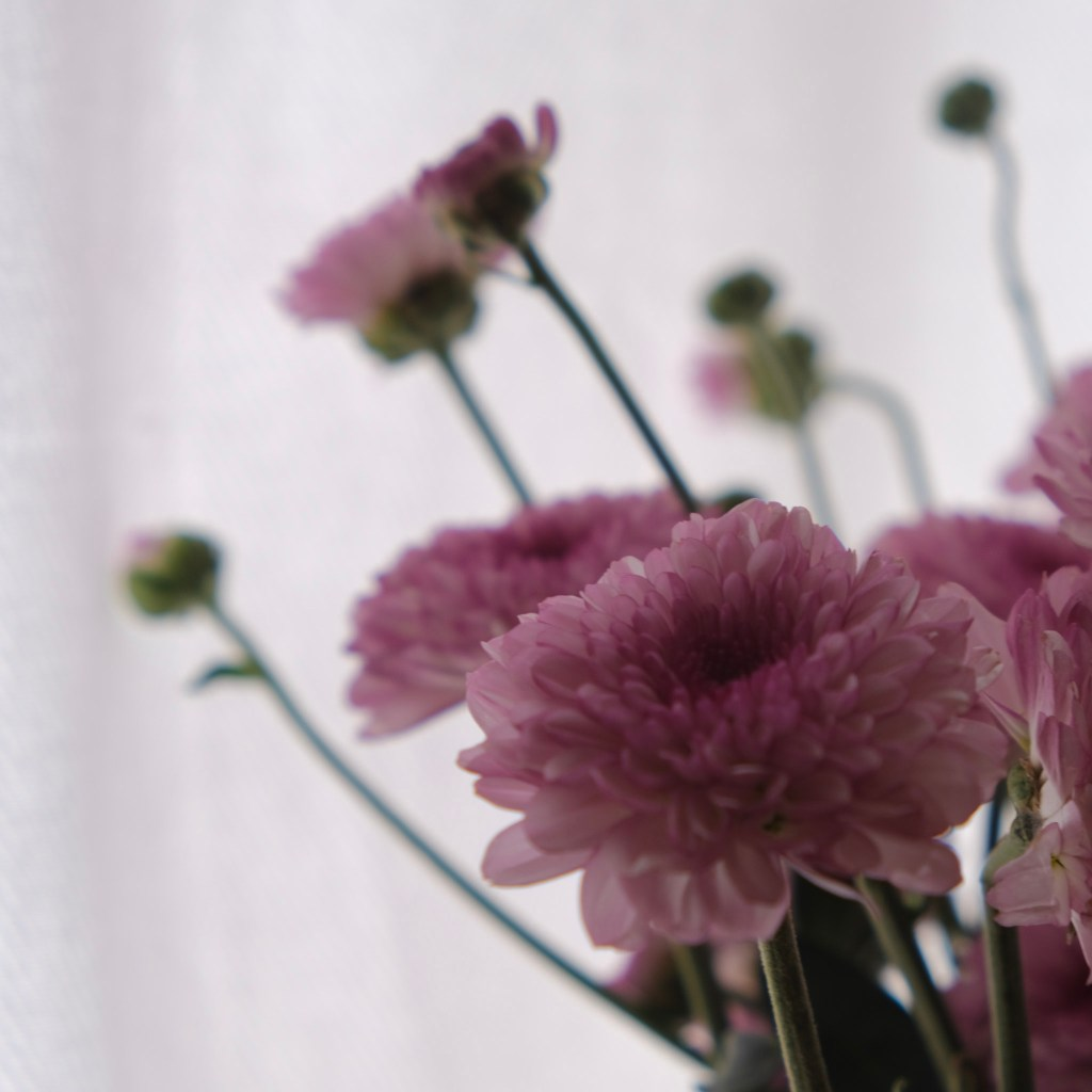 Pink Flowers, floral arrangments