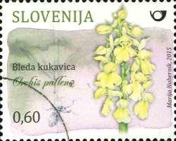 Orchidee Orchis pallens auf slowenischer Briefmarke
