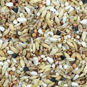Kampol D - Diät Reinigungsmischung mit Mariendistel