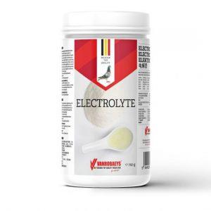 Vanrobaeys Electrolyte
