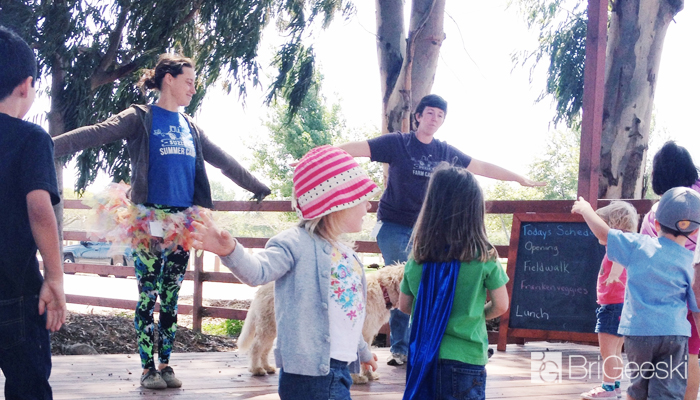 Suzie's Farm : Summer Camps