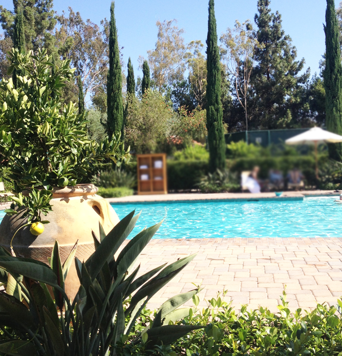 Sweet pool view at RB Inn