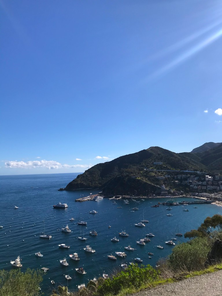 Everything you need to know for a one night trip to Catalina Island