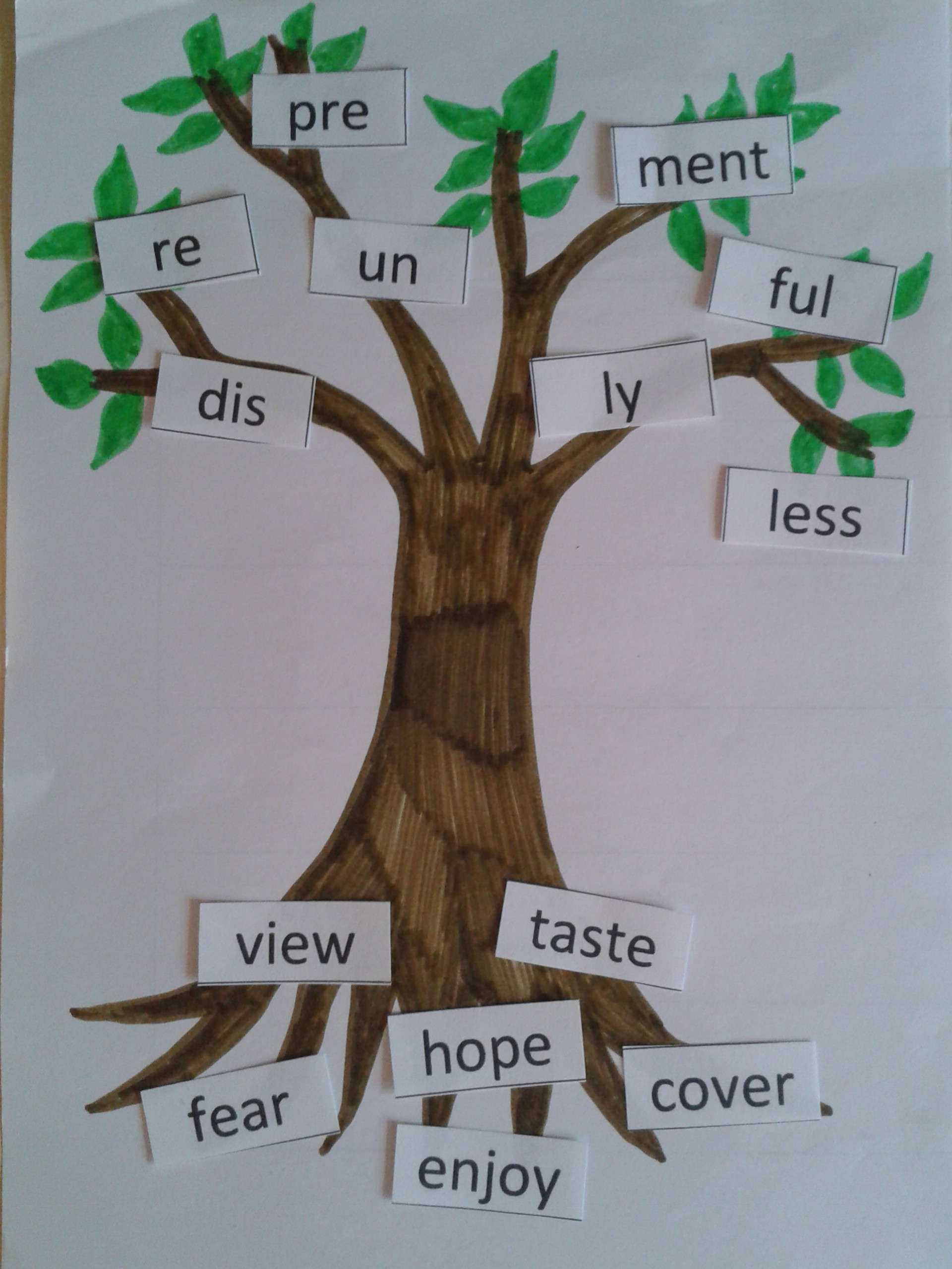 Prefixes Suffixes And Root Words