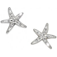 Cape Star Cape Star Mini Post Earrings Earrings