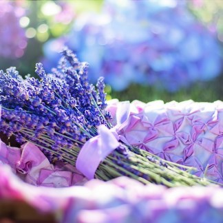An Introduction To Aromatherapy Massage