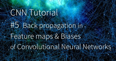 CNN 卷積神經網路 卷積核 backward pass backpropagation feature maps biases