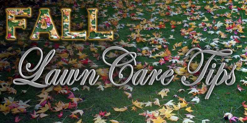 Fall Lawn Care Tips - Fall Lawn Care Tips - Weed, Seed, & Feed