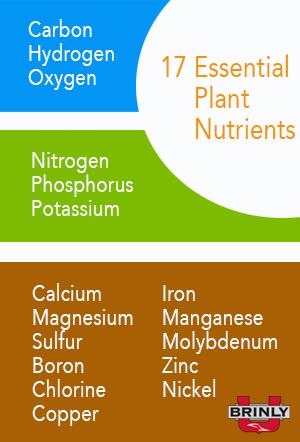 17 Essential Plant Nutrients - Lawn Fertilizer 101