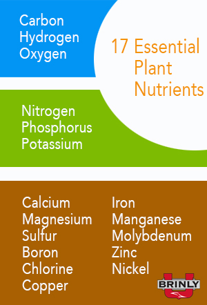 17 Essential Plant Nutrients - Lawn Fertilizer 101