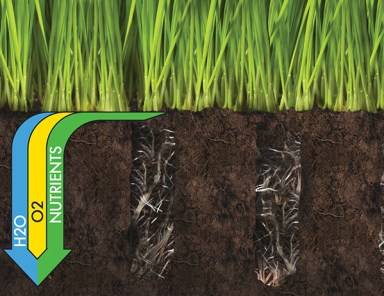 core aerator plugs - Fall is the Time to Core Aerate & Overseed