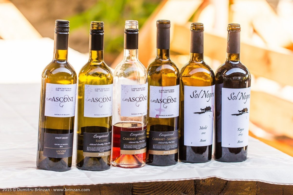 Asconi Winery in Puhoi Village, Moldova - Lineup of Wine Bottles
