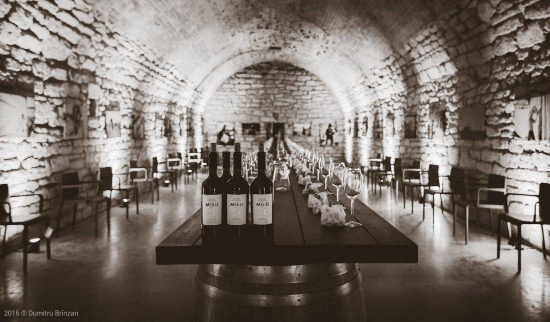 castel-mimi-winery-moldova-2016-20