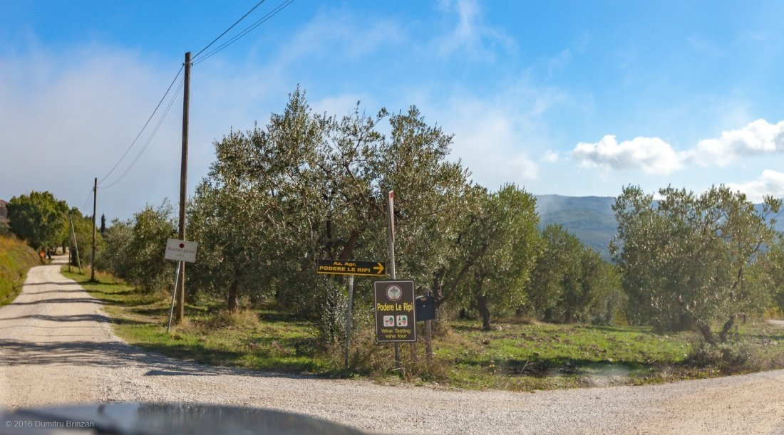 2016-podere-le-ripi-winery-montalcino-1