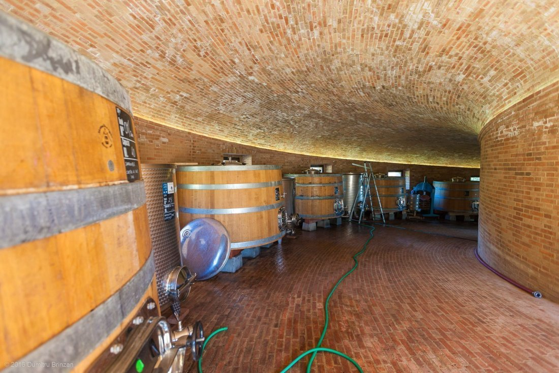 2016-podere-le-ripi-winery-montalcino-11-inside-golden-cellar